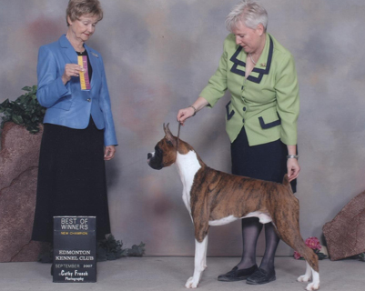 Rooney's championship picture with handler, Josie O'Reilly, in Edmonton.